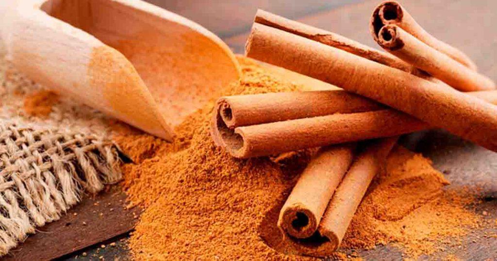 สมุนไพรแก้กรดไหลย้อน อบเชยญวน (Saigon cinnamon)