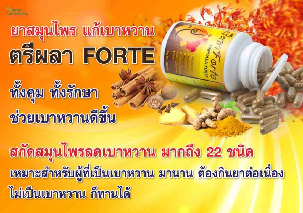 ยาสมุนไพร รักษา เบาหวาน ตรีผลา FORTE ทั้งคุม ทั้งรักษา ช่วยเบาหวานดีขึ้น สกัดสมุนไพรลดเบาหวาน มากถึง 22 ชนิด เหมาะสำหรับผู้ที่เป็นเบาหวาน มานาน ต้องกินยาต่อเนื่อง ไม่เป็นเบาหวาน ก็ทานได้