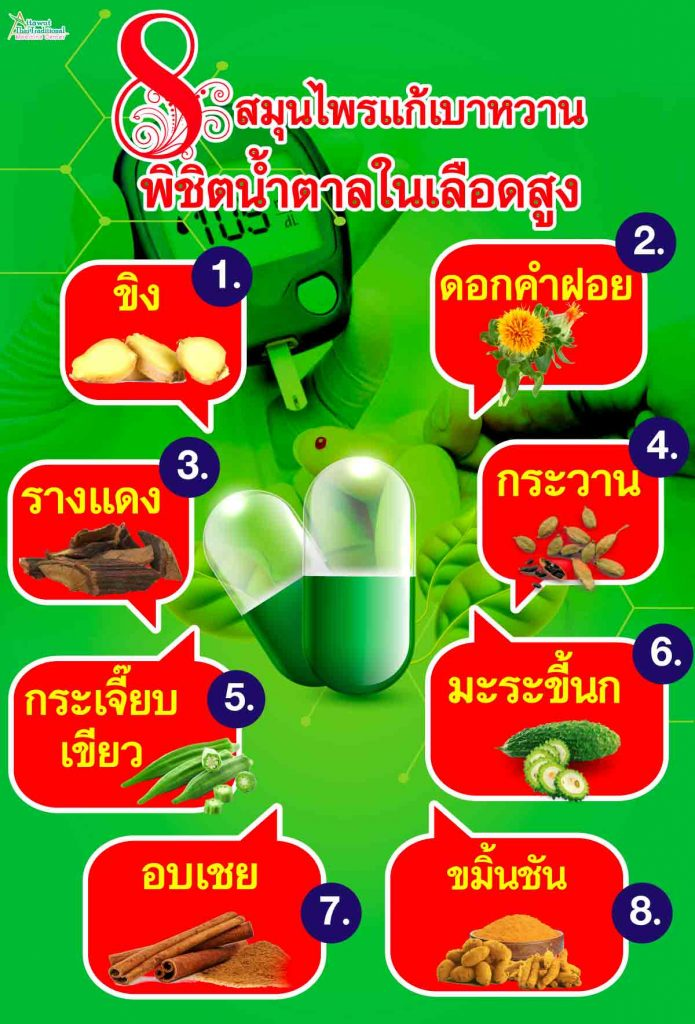 8 สมุนไพรแก้เบาหวาน พิชิตน้ำตาลในเลือดสูง 1. ขิง 2. ดอกคำฝอย 3. กระวาน 4. กระเจี๊ยบเขียว 5. รางแดง 6. มะระขี้นก 7. อบเชย  8. ขมิ้นชัน