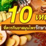 10 เหตุผล ที่ควรกินยาสมุนไพรรักษาเบาหวาน