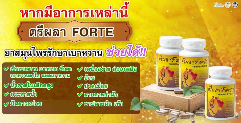 หากมีอาการเหล่านี้ ตรีผลา FORTE ยาสมุนไพรรักษาเบาหวาน ช่วยได้! เป็นเบาหวาน เบาหวานขึ้นตา เบาหวานลงไต แผลเบาหวาน น้ำตาลในเลือดสูง กระหายน้ำ  ปัสสาวะบ่อย เหนื่อยง่าย อ่อนเพลีย อ้วน  ปวดเมื่อย สายตาพร่ามัว  ชาปลายมือ เท้า